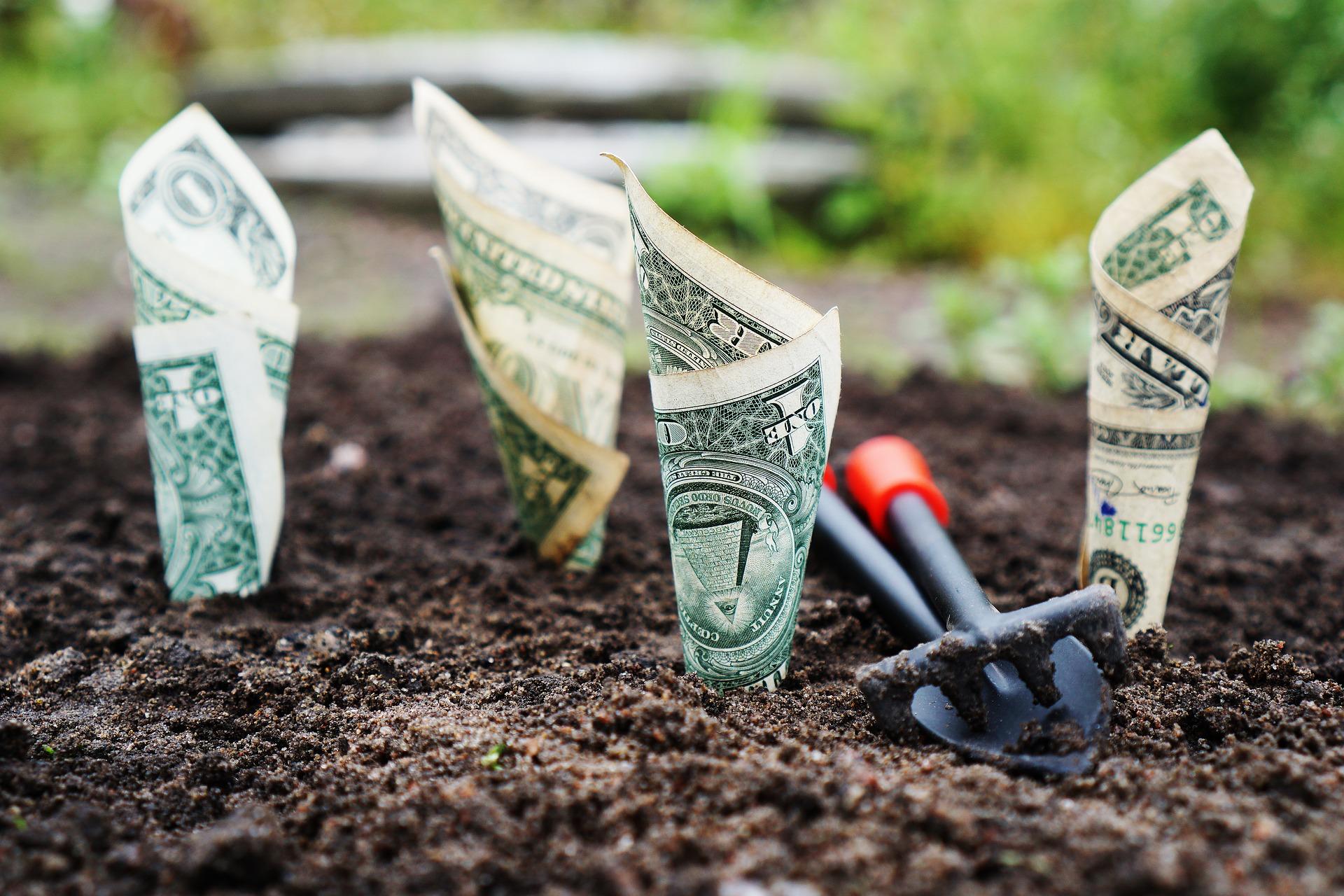 Tag des Geldes, Wachstum